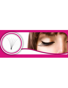 Mixte bouquet Extension de cils Volume Russe 6D 25,00 € Volume Russe
